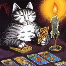 chat cartes tarot